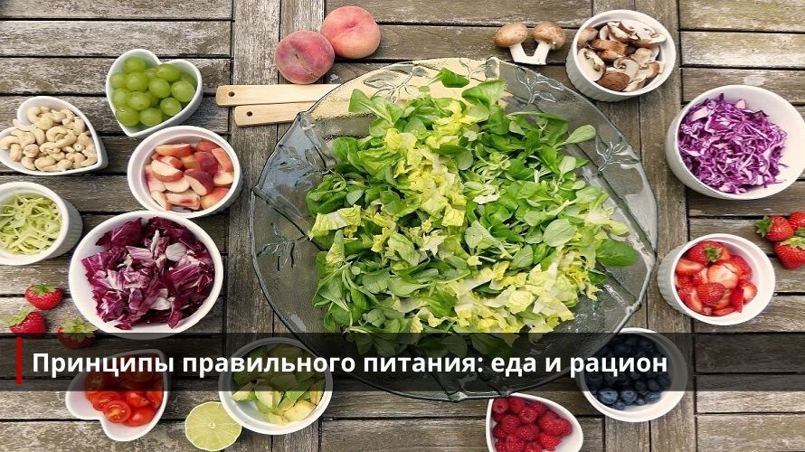 Основные принципы правильного питания: еда и рацион