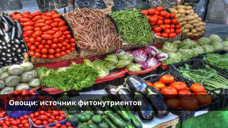 Овощи - источник фитонутриентов